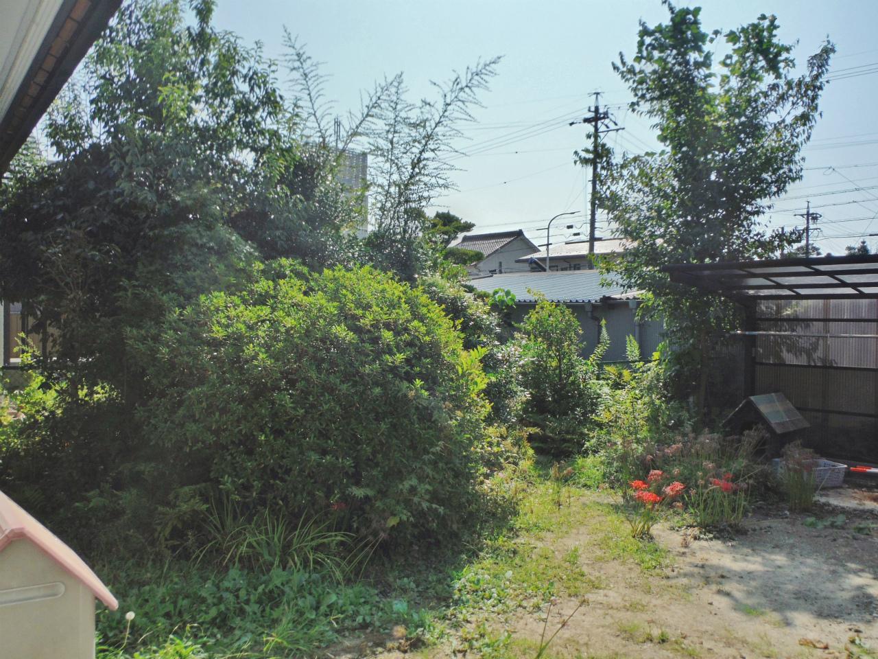 空家の剪定 栃木県