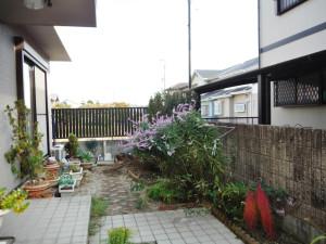 茨城県桜川市のコニファー剪定