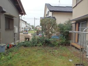 兵庫県尼崎市の剪定伐採