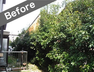 明石市で植木の伐採前