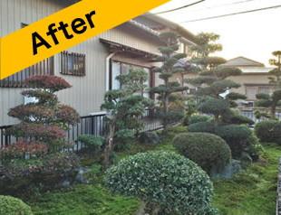 篠山市でお庭のお手入れ後