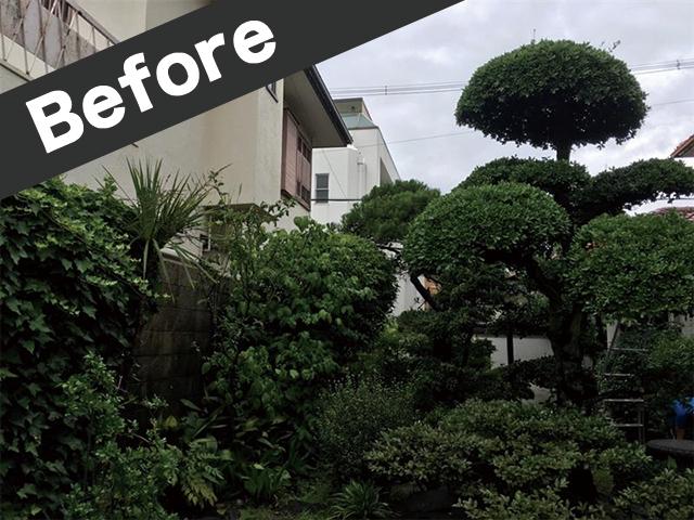 鳥取県大山町で庭手入れ前