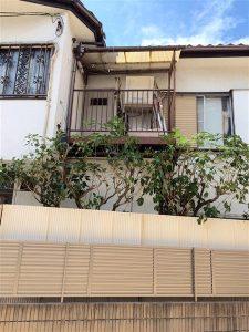 鳥取市で植木の剪定作業後