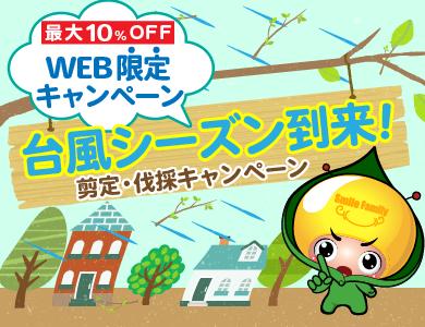 台風シーズン到来!剪定・伐採キャンペーン