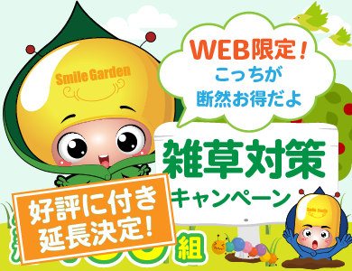 【WEB限定】 雑草対策キャンペーン